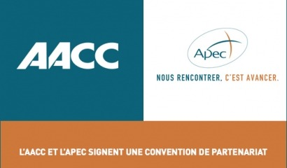 Accord AACC x Apec